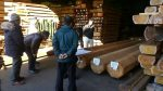 浄念寺 木材選定 加工